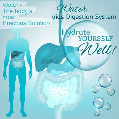 Water - the body's most precious solution